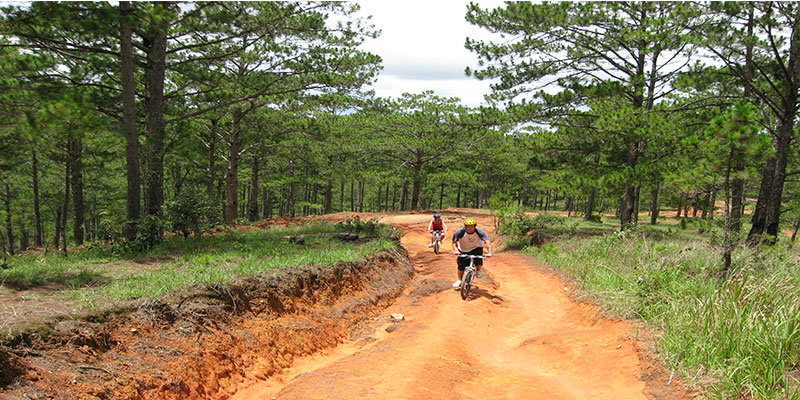 Southern biking challenge