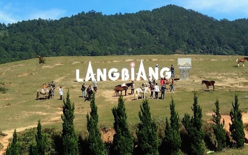 1 DAY LANGBIANG MOUNTAIN TREKKING AND HIKING TOUR IN DA LAT